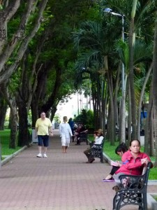 Ho Chi Minh City Photos - City Park