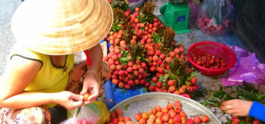 Saigon unseen feature image