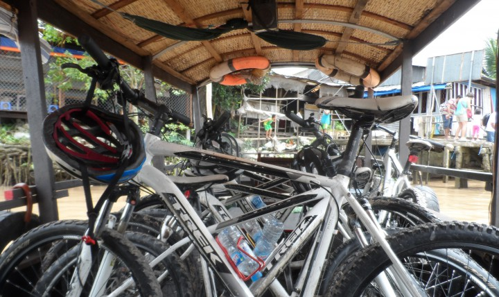 Vietnam Cycling Reviews - Mekong Day Trip