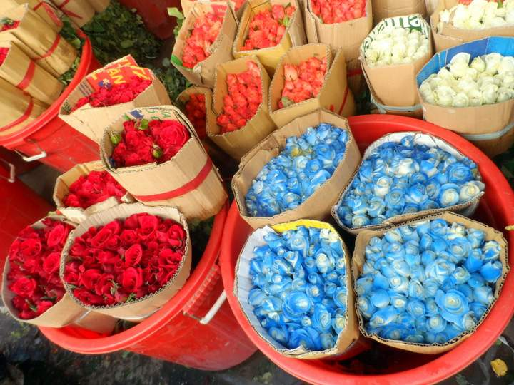 Hồ Thị Kỉ Market, - Flower Market District 10