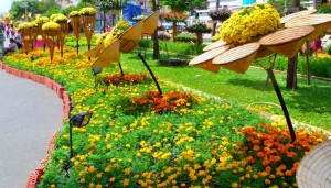 TET-2015-Saigon. flower Street